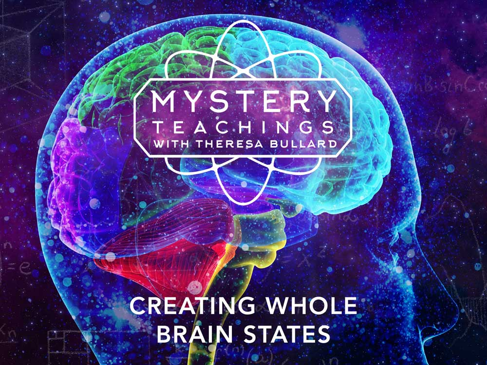 183185_MT_s2e9_Creating-Whole-Brain-States_4x3