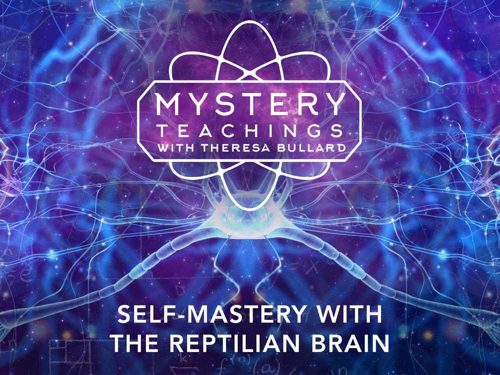 183561_MT_s2e12_Self-Mastery-with-the-Reptilian-Brain_4x3