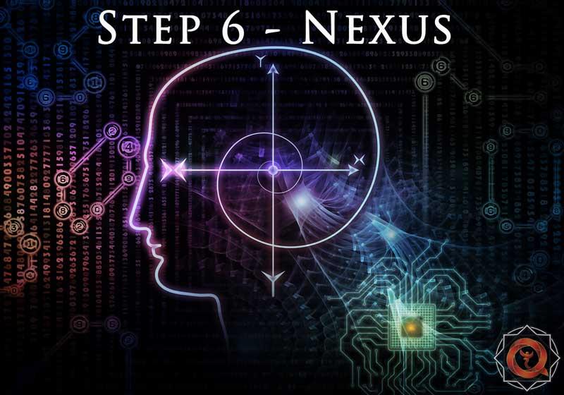 6-NEXUS-(1)